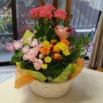 今年もお花ありがとう
